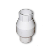 Picture of Check Valve 1in