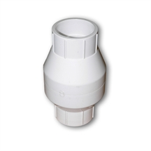 Picture of Check Valve 2in